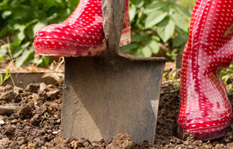 We-Plan-you-Plant.boots.new